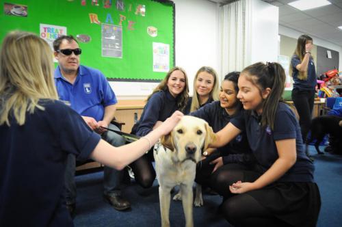 De-stressing Puppy Workshop - 2019